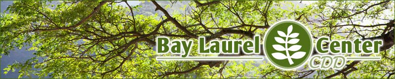 Bay Laurel Center Community Development District in Ocala, FL