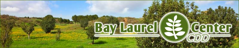 Bay Laurel Center Community Development District.